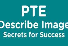 pte-describe-image-pie-chart