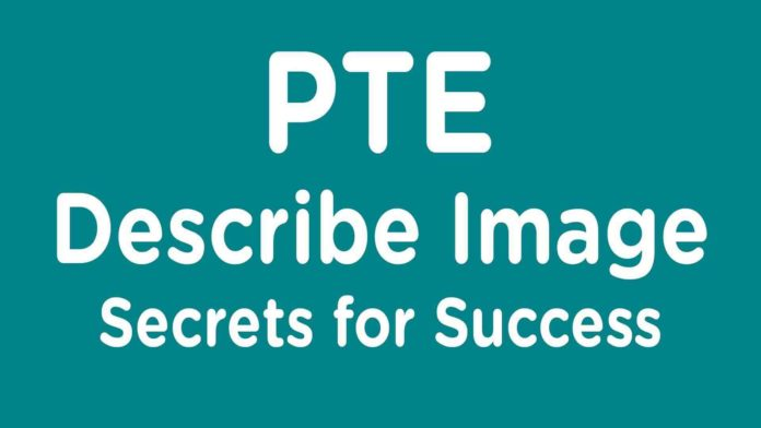 pte-describe-image-pie-chart